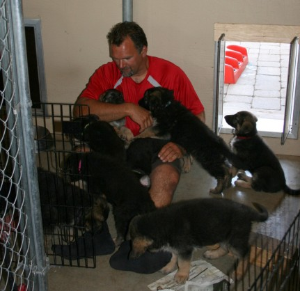 Mark with puppies
