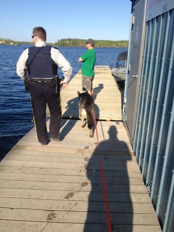 Sarge - dock 1
