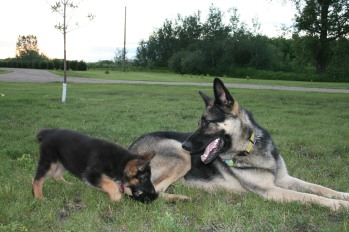 Cassie & Brady