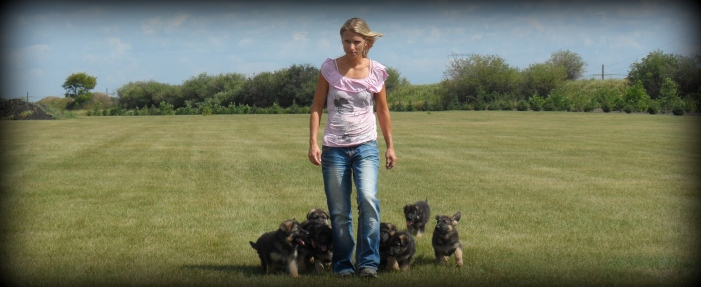 Jemine Walking with A litter