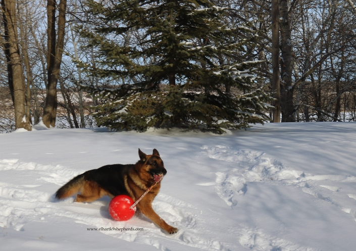 Kimon stride with ball